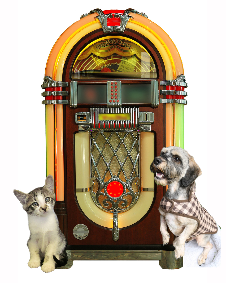 Jukebox with pets
